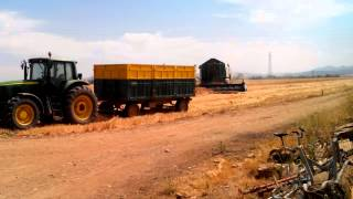 Cosecha de trigo duro con John Deere