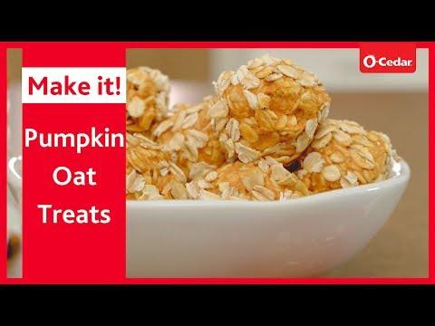 pumpkin-oat-balls-pet-treats