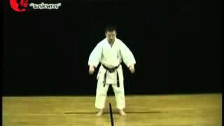 Уроки Киокушин-кан