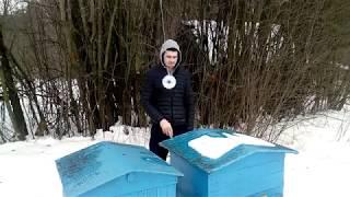 Зимовка пчёл с соломенными подушками. 02.02.2018.