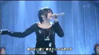 Day After Tomorrow -  Starry Heavens live