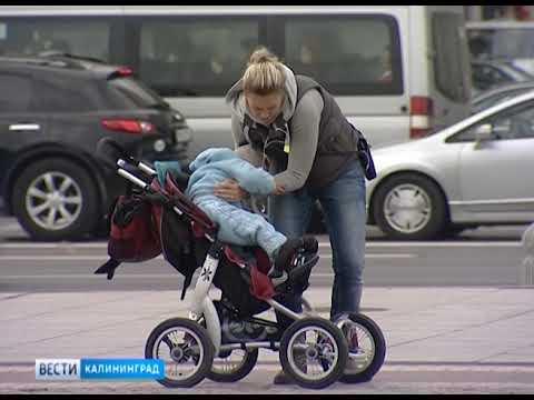 В Калининградской области выделили дополнительные средства на компенсацию многодетным семьям