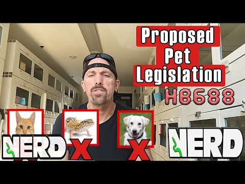 Scary  Proposed Legislation HB688, For New Hampshire Residents!