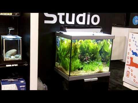 Fluval Studio Aquarium
