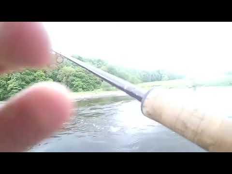 Salmon Fishing The River South Tyne
