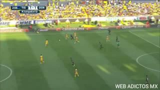 Gol de dorados vs Tigres 1-1