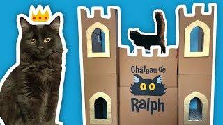 I Built The World's Greatest Cat Castle