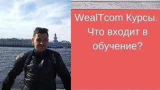 WealTcom Курсы!  Что входит в обучение?