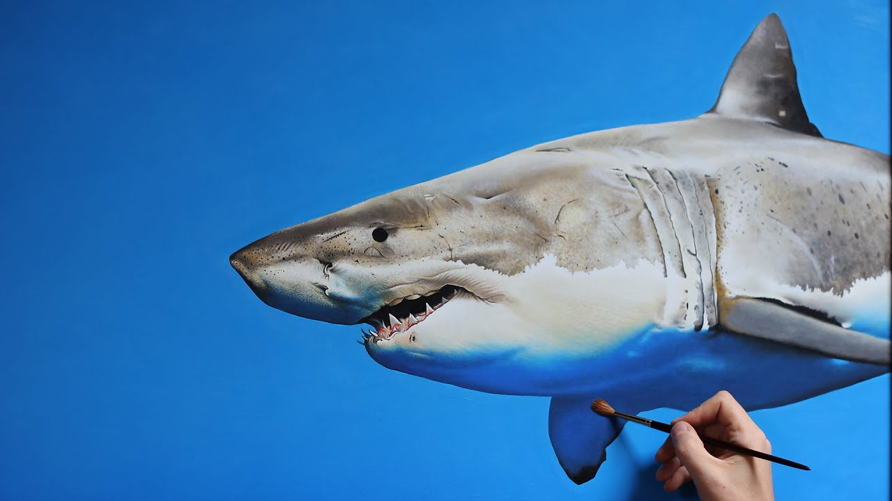 Gallery For gt Cool Shark Painting