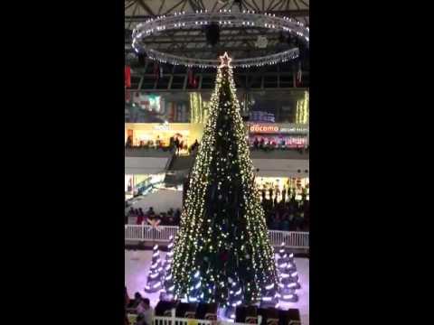 2013 Xmas tree light show