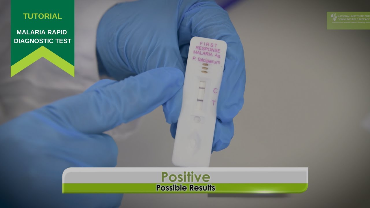 Download How to use a Malaria Rapid Diagnostic Test
