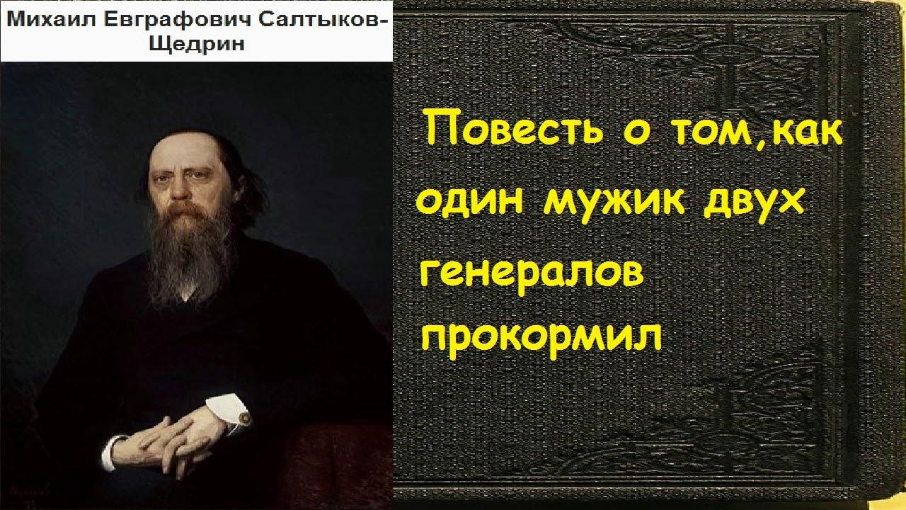 Михаил Салтыков-Щедрин.  Повесть о том, как один мужик двух генералов прокормил аудиокнига