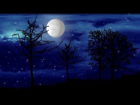 European Jazz Trio - Clair de Lune (Debussy)