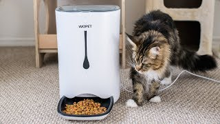 7L Automatic Dog Feeder 4Meals