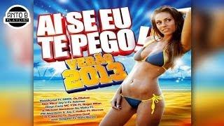 Jose Delgado feat. Dani Menez - Cosa linda ♪ (Ai Se Eu te Pego / Verao 2013)