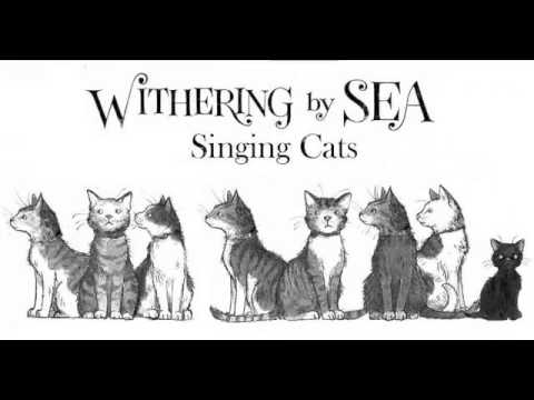 Withering by Sea Book Trailer