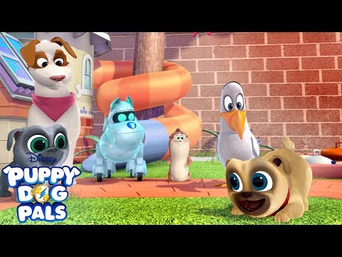 Pug Tag | Playtime with Puppy Dog Pals | Disney Junior