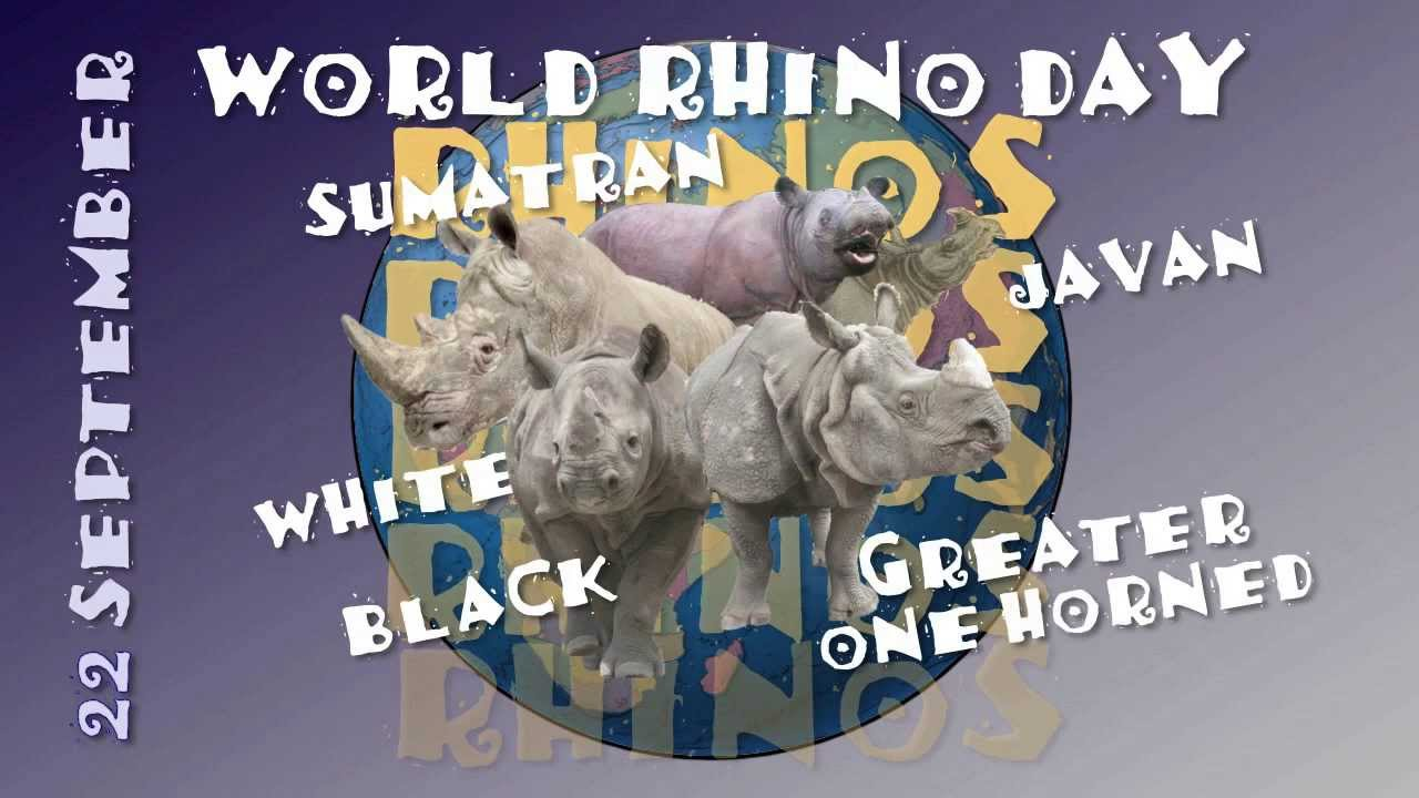 Image result for world rhino day
