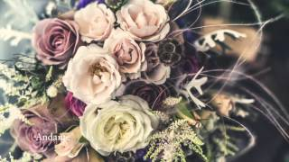 Wedding Bride Themes - by Roy Todd (exclusive preview)