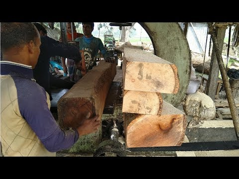 Perfect, Solid and High Quality of Rain Tree Wood Cutting in Rural Saw Mill of Asia/Cutting Wood