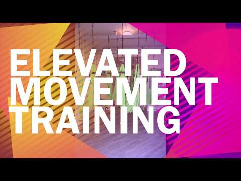 Elevated Movement Training - Aerial Yoga with Hammock + Handles