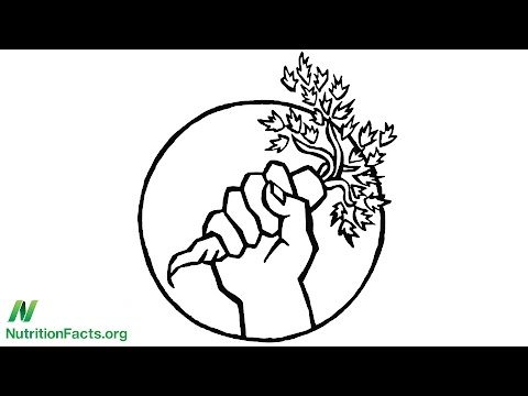 The Healthy Food Movement: Strength in Unity