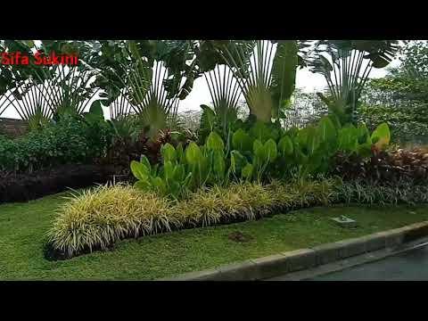Beautiful Oasis Garden - Taman Oasis Yang Indah - YouTube