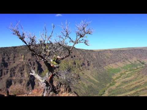 Steens Mountain Wilderness