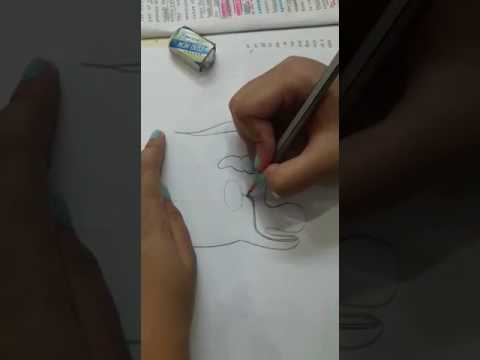 Drawing Male Reproductive System - Easy Way