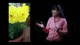 Entrevista de Estética Musical - Prof. María Luisa Arencibia