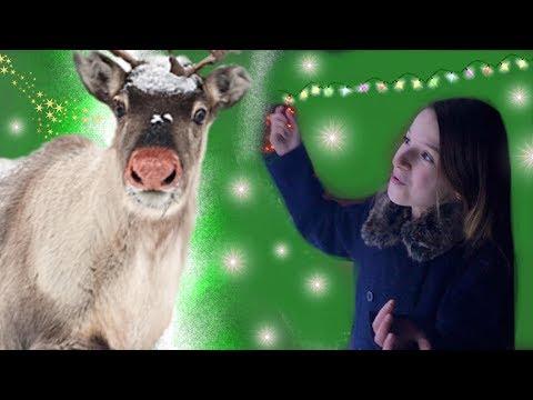 Ma rencontre avec le renne du Père-Noel !  LE PETIT RENNE AU NEZ ROUGE / Cover Lévanah