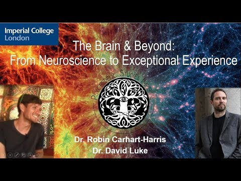 Psychedelics Debate 2017: The Brain and Beyond  (Dr Robin Carhart-Harris & Dr David Luke)