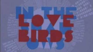 Lovebirds - In The Shadows