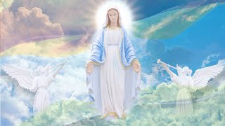 Eucharistic Celebrations -English   August 15   Our Lady of Lourdes Church, Orlem