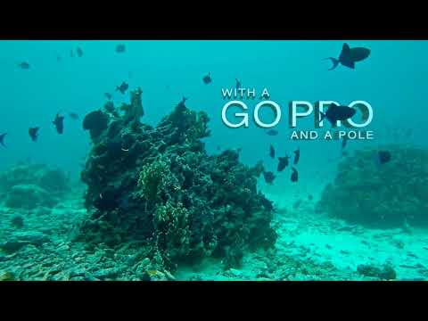 Snorkeling gear rental - Iboih Channel snorkeling
