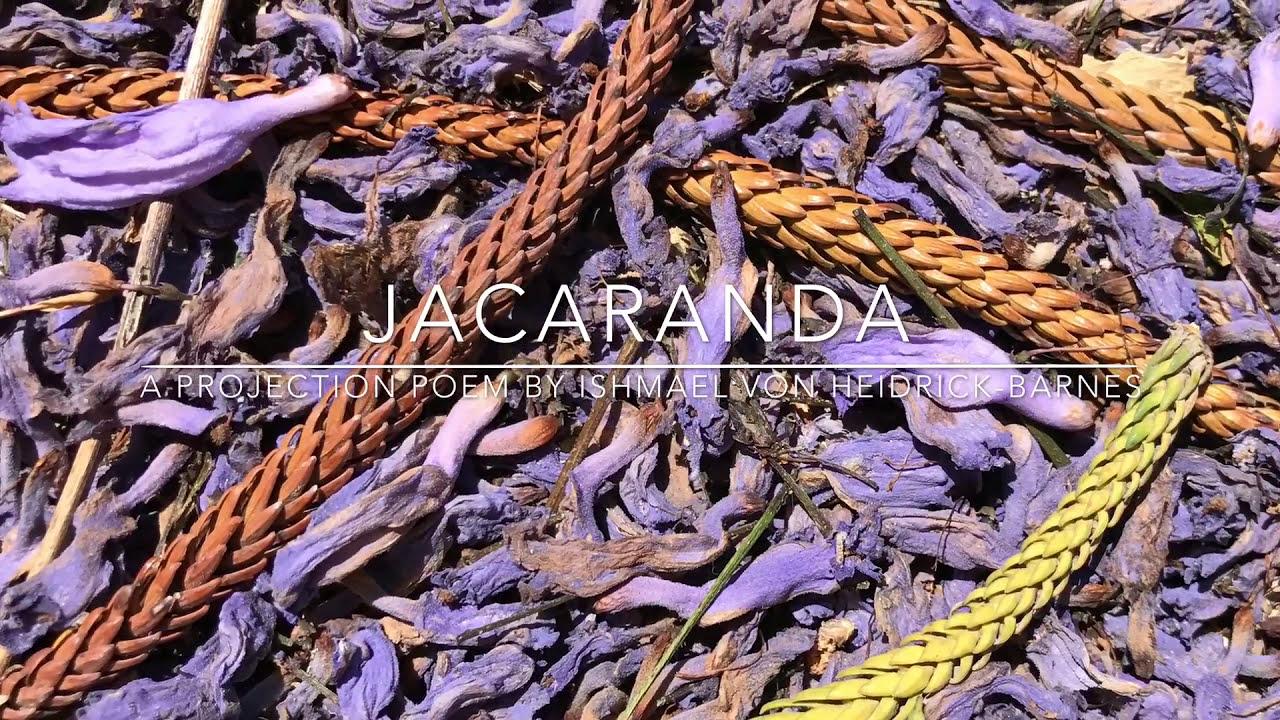 JACARANDA:  A Projection Poem by Ishmael von Heidrick-Barnes