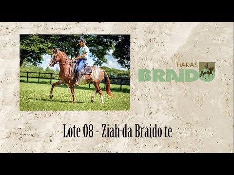 Ziah da Braido