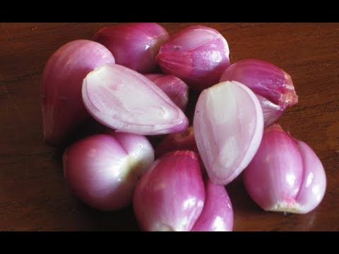 Eat Raw Onions Every Day and These Will Happen to Your Body
