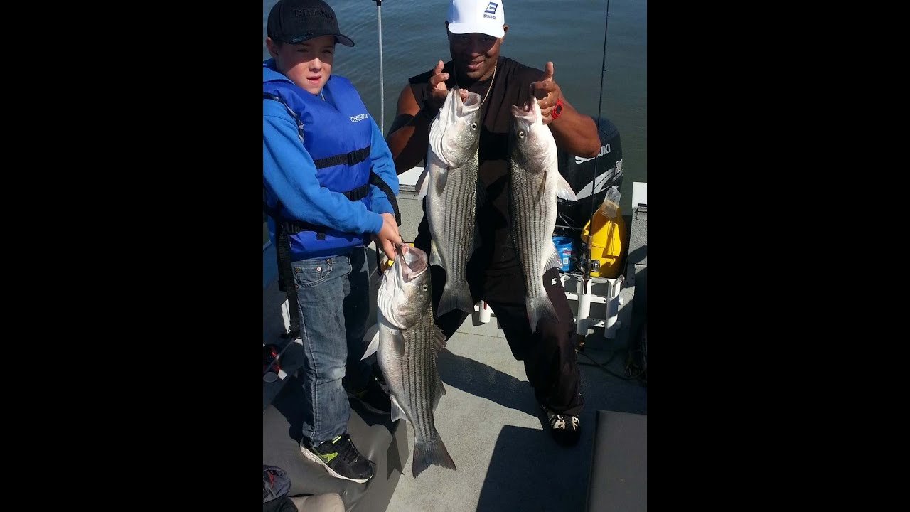How To Catch Big Striped Bass On San Francisco Bay Youtube