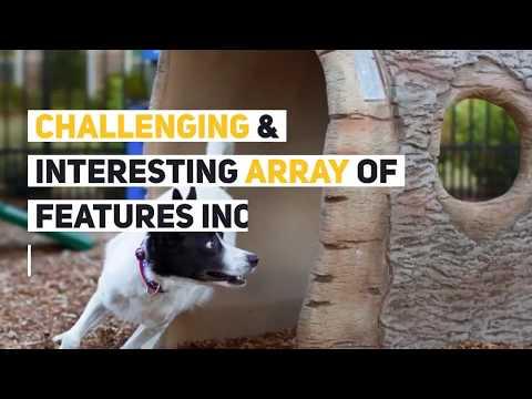 dog-park-planning-tips-|-essential-dog-park-equipment