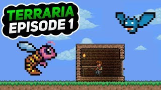 Let's Play Terraria Together!   Trying to Learn the Basics   Episode 1