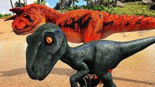 O Crocodilo Me Deu Um Bebê Blue Raptor Antes de Falecer! HYPO CARNO! Dinossauros Ark Survival