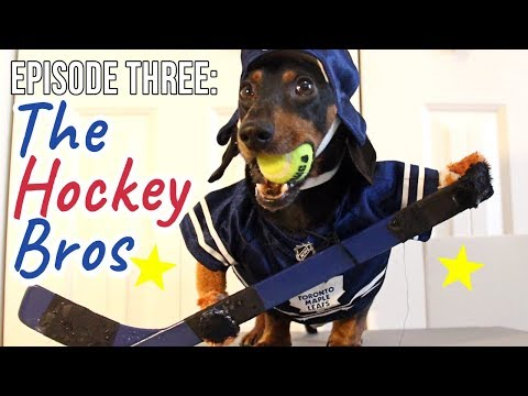 Episode Three: The Wiener Dog Hockey Bros