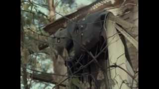 Рой (1990) фильм смотреть онлайн