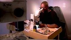 Kunst im Nadelöhr - Der britische Bildhauer Willard Wigan schafft die kleinsten Kunstwerke der Welt