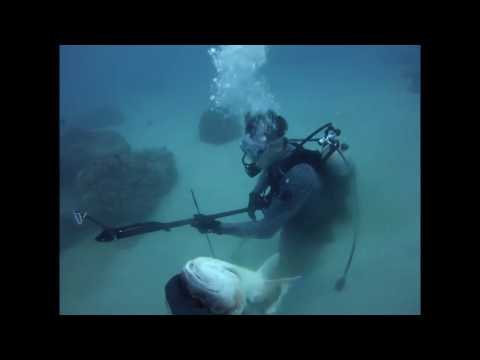 Boulder reef diving and spearfishing