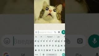 как поменять шрифт в WhatsApp? Сегодня я отвечу!