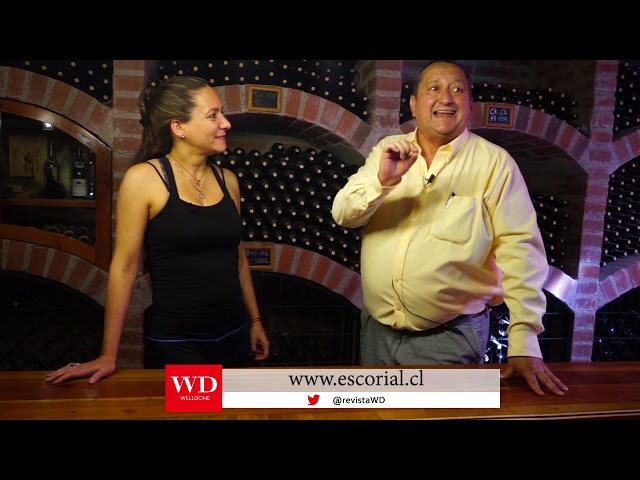 Conozca las maravillas de Wine Wein Tour Chile.