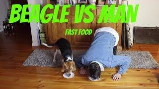 Man Vs Beagle
