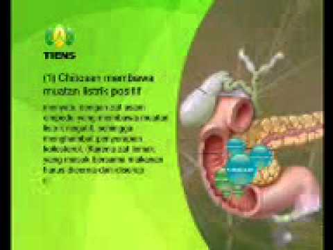 how to make chitosan bioplastic